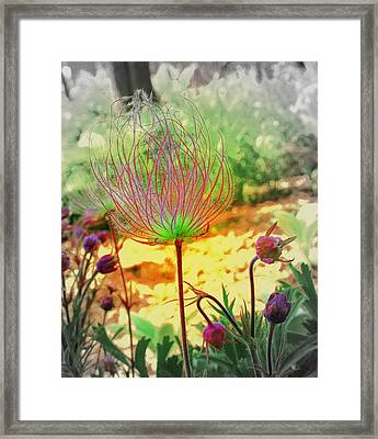 Alien In The Garden Framed Print by Julie Lueders