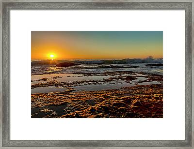 Aliso Point Framed Print by Kelley King
