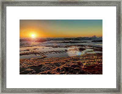 Aliso Point With Flare Framed Print by Kelley King