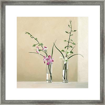 Alison's Orchids Framed Print by Linda Tenukas