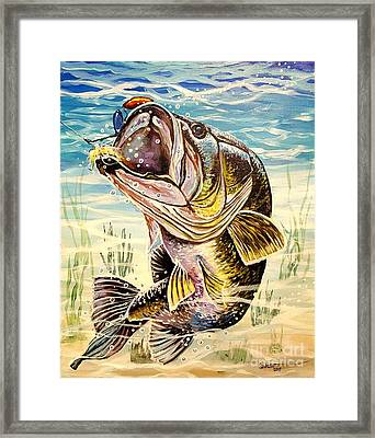 All About The Bass Framed Print by Sandra Lett