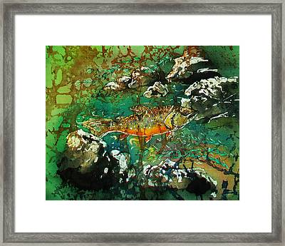 All About Trout Framed Print by Sue Duda
