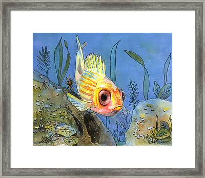 All Alone - Squirrel Fish Framed Print by Arline Wagner