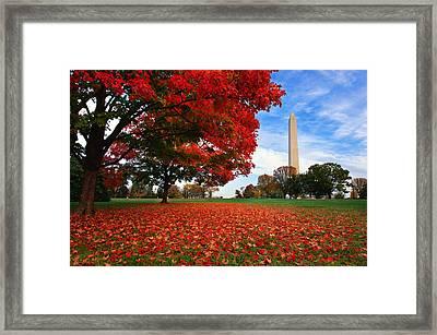 All American Framed Print