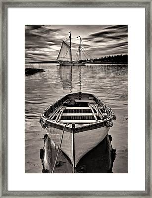 All Ashore Framed Print by Fred LeBlanc
