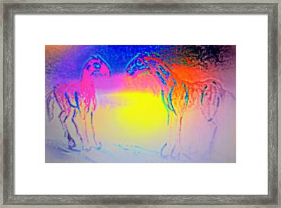 All Cats Are Grey But Horses Are Always Colorful  Framed Print