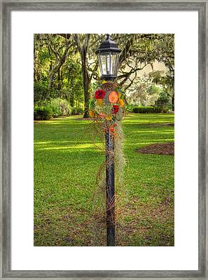 All Dressed Up For Fall Framed Print by Linda Covino