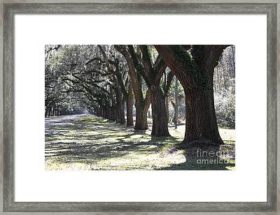 All For One And One For All Framed Print by Carol Groenen