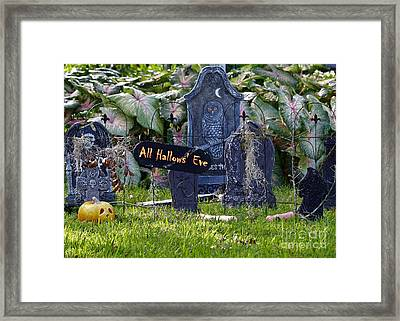All Hallows Eve Framed Print by Diann Fisher