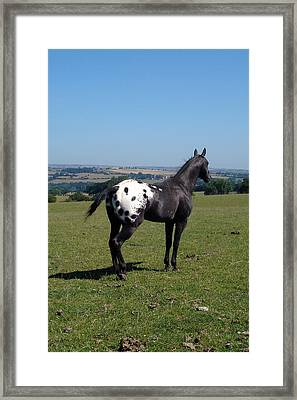 All He Surveys Framed Print