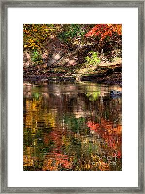 All I See Is Color Framed Print by Tony  Bazidlo
