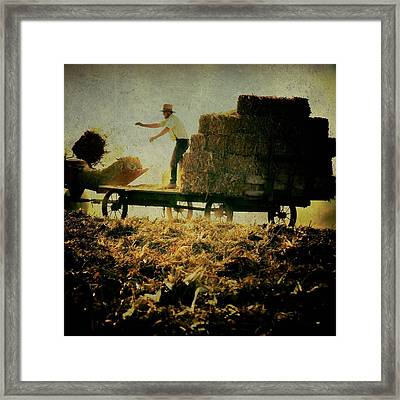 All In A Day's Work Framed Print by Trish Tritz