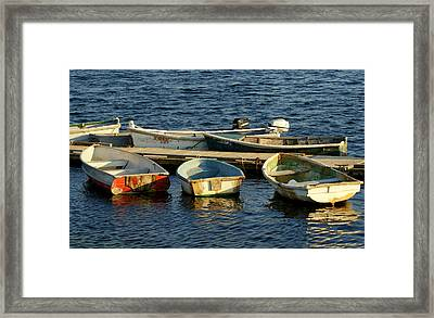 All In A Row Framed Print by Lois Lepisto