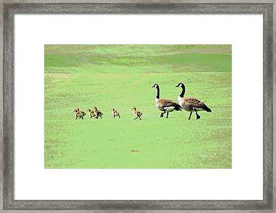 All In The Family II Framed Print
