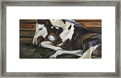 All Legs And Spots Framed Print