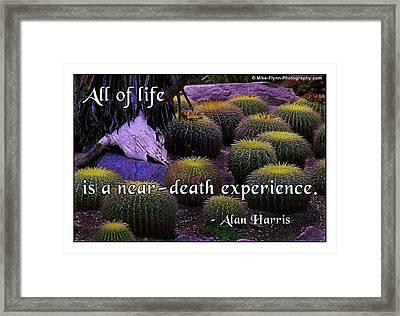 All Life Framed Print by Mike Flynn