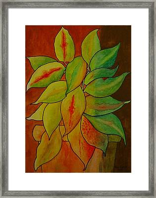 All Mixed-up  Framed Print by Ron Sylvia