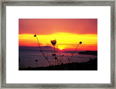 All Most Night Framed Print by Jacqueline Doulis