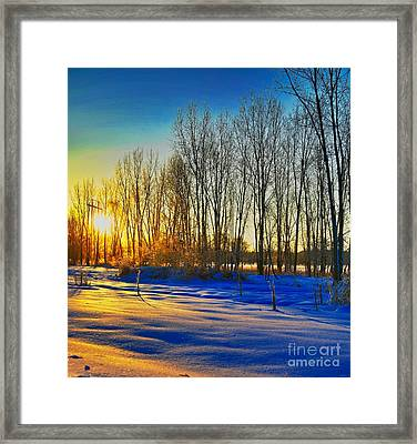 All That Color Framed Print by Robert Pearson