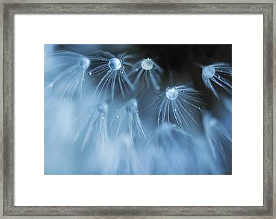Framed Print featuring the photograph All That Glitters Is Not Gold by Rebecca Cozart