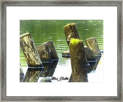 All That Remains Framed Print by Melissa Messick