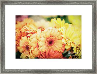 Framed Print featuring the photograph All The Daisies by Ana V Ramirez