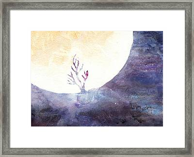 All The Magic Of The Earth And The Skies Framed Print by Lesley Atlansky
