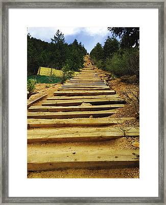 All The Way Up Framed Print
