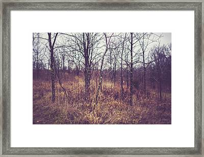 Framed Print featuring the photograph All The While by Shane Holsclaw