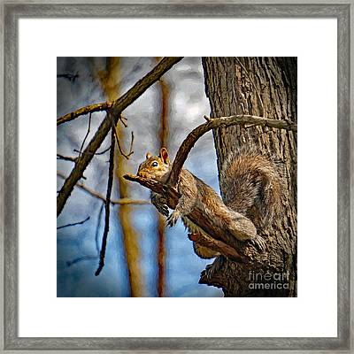 All Tuckered Out Framed Print
