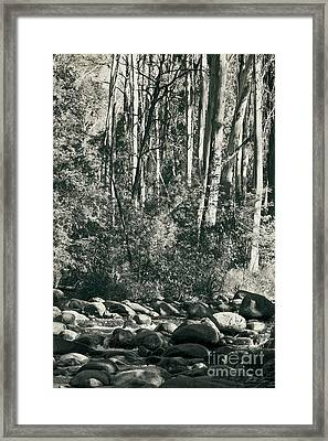 Framed Print featuring the photograph All Was Tranquil by Linda Lees