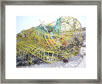 All Washed Up Framed Print by Conor Murphy