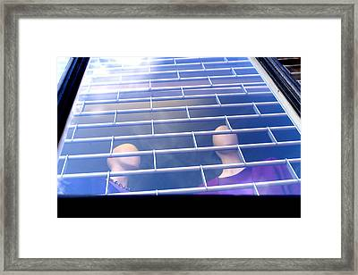 All We Can Do Is Observe Framed Print by Jez C Self
