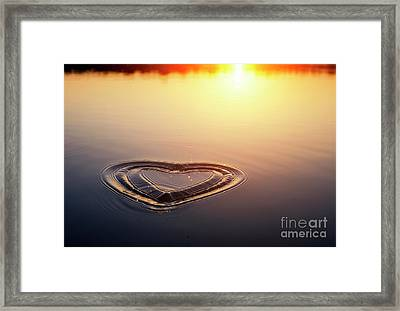 All We Need Is Love Framed Print by Tim Gainey