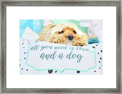 All You Need Is Love And A Dog Framed Print by JC Findley