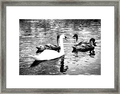 Framed Print featuring the photograph All You Need Is Love  by Fine Art By Andrew David