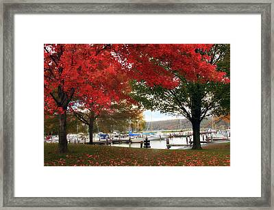 Allan H. Treman State Marine Park Framed Print