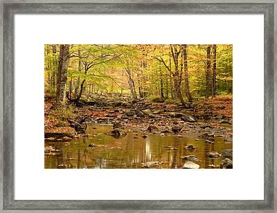Allegheny Fall Framed Print by Eric Foltz