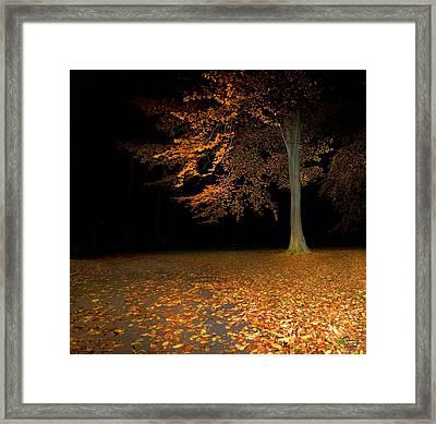 Alleine Framed Print by Renata Vogl