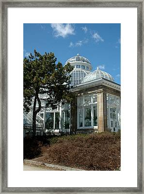 Allen Gardens Framed Print by Mark Platt
