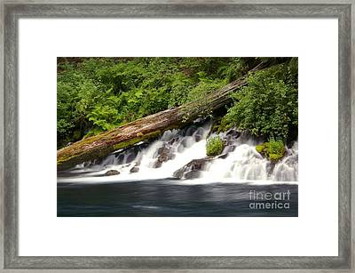 Allen Springs On The Metolius River Framed Print
