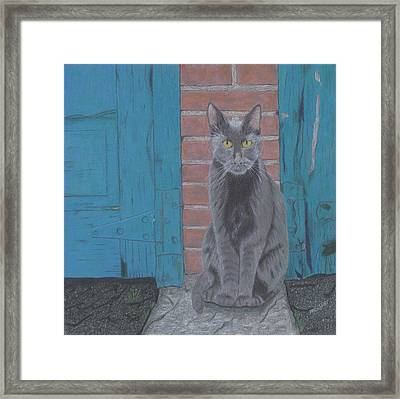 Framed Print featuring the drawing Alley Cat by Arlene Crafton
