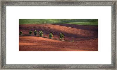 Alley In The Wavy Fields Framed Print