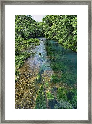 Alley Spring Framed Print by Cricket Hackmann