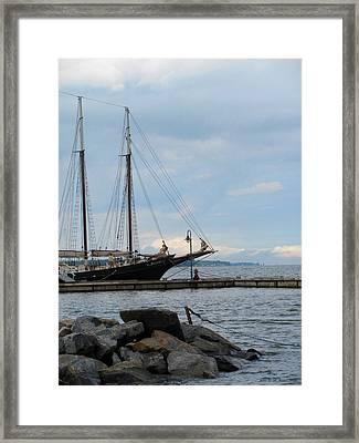 Alliance Yorktown Framed Print