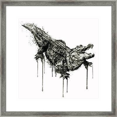 Alligator Black And White Framed Print