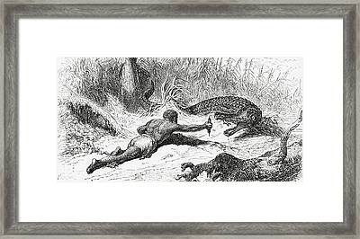 Alligator Hunting In 19th Century Framed Print