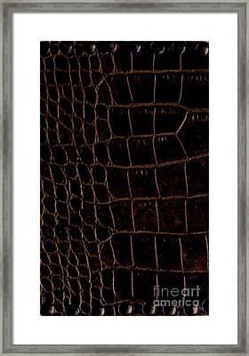 Alligator Look Abstract Framed Print by Marsha Heiken