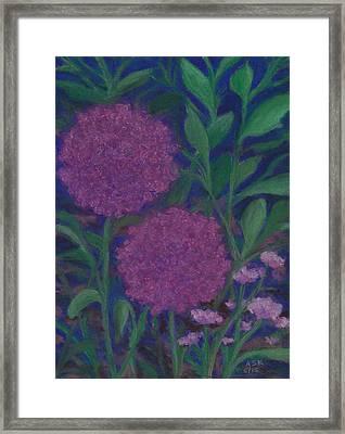 Allium And Geranium Framed Print