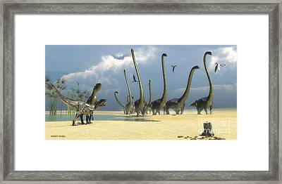 Allosaurus And Omeisaurus Dinosaurs Framed Print by Corey Ford